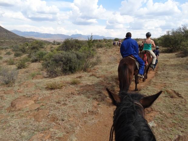 paardrijden (53)